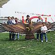 32_eaglekite